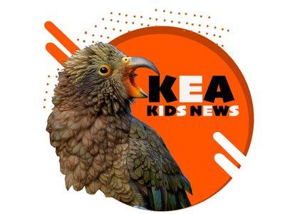 Kea Kids News